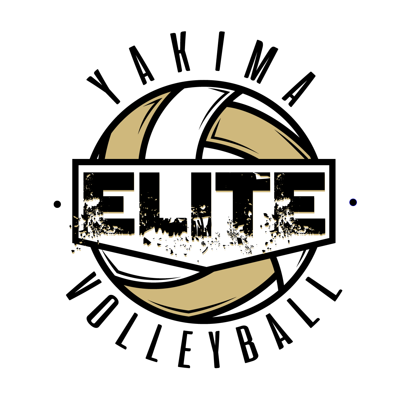 Yakima Elite Volleyball